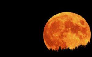 Заговор на луну растущую